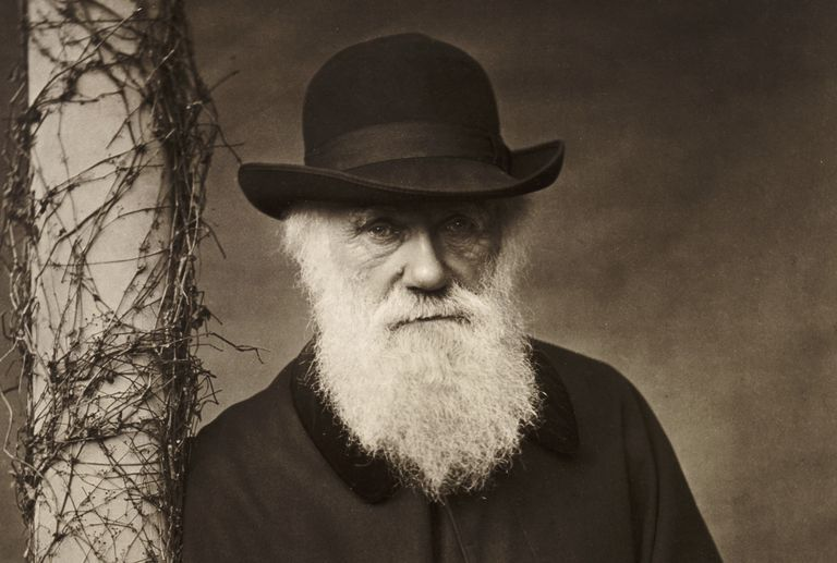 Charles Darwin. Fotó: Heritage Images/Getty Images